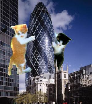 Architectural LOLCATS, photo N�11
