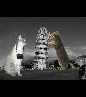 Architectural LOLCATS, photo N�5